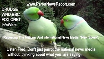 Read The Parrot News Report